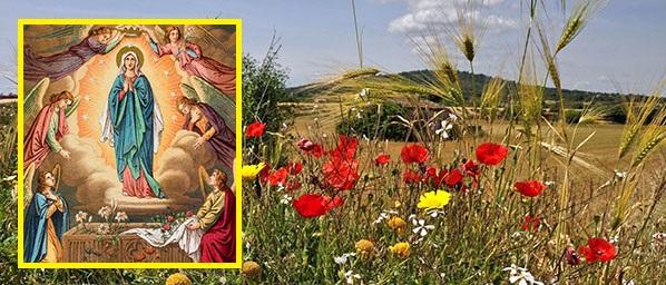 Matka Boża Wniebowzięta Królowa Polski